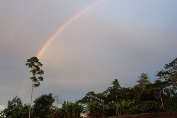 arco-irisD2980154-C978-8260-26C6-F9AABF75453E.jpg